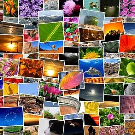 무료 사진, 아이콘 이미지 다운로드 사이트